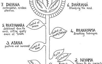 Vraag van de Maan – Wat is Samadhi?